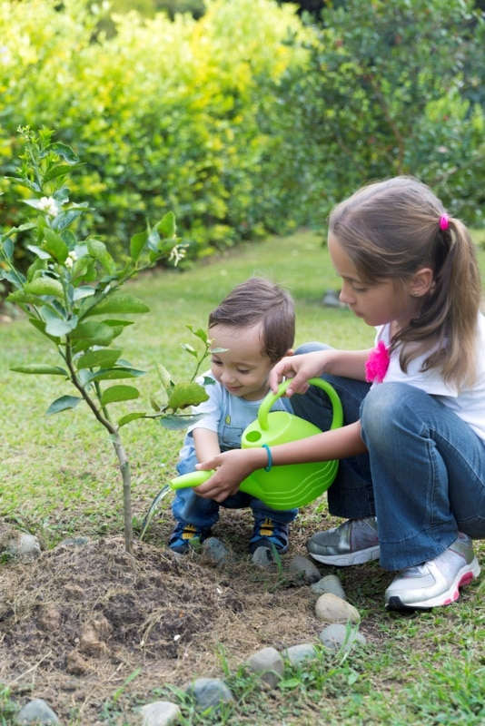 Montessori Education Creating A Garden With Your Child Montessori Academy Sharon Springs